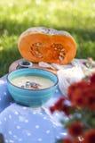 Σούπα κολοκύθας στο μπλε πιάτο με το πράσινο υπόβαθρο στοκ φωτογραφία με δικαίωμα ελεύθερης χρήσης