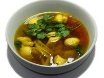 Σούπα κοτόπουλου με Turmeric και τα χορτάρια Στοκ φωτογραφίες με δικαίωμα ελεύθερης χρήσης
