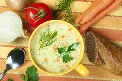Σούπα κρέμας κοτόπουλου Στοκ φωτογραφίες με δικαίωμα ελεύθερης χρήσης