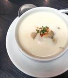 Σούπα κρέμας μανιταριών Στοκ Φωτογραφία
