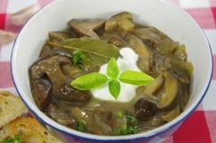 Σούπα κρέμας με boletus Στοκ Εικόνα