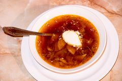 σούπα κρέμας ξινή Στοκ Εικόνα