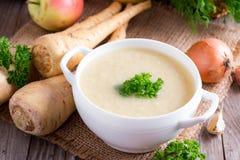 Σούπα κρέμας παστινακών Στοκ Φωτογραφίες