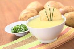 Σούπα κρέμας πατατών Στοκ Εικόνες