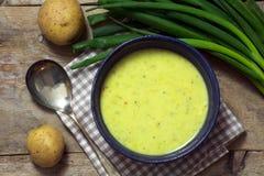 Σούπα κρέμας πράσων με τα κρεμμύδια και τις πατάτες άνοιξη στο αγροτικό ξύλο Στοκ Εικόνα