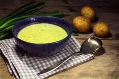Σούπα κρέμας πράσων με τα φρέσκες κρεμμύδια και τις πατάτες άνοιξη σε αγροτικό Στοκ Φωτογραφίες