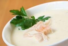 Σούπα κρέμας σολομών στοκ εικόνες με δικαίωμα ελεύθερης χρήσης