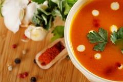 Σούπα κρέμας φακών Στοκ φωτογραφία με δικαίωμα ελεύθερης χρήσης
