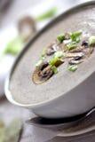 Σούπα κρέμας Στοκ εικόνες με δικαίωμα ελεύθερης χρήσης