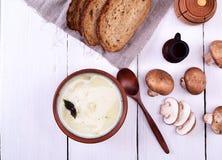 Σούπα μανιταριών κρέμας Στοκ φωτογραφίες με δικαίωμα ελεύθερης χρήσης