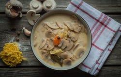 Σούπα μανιταριών με τα λαχανικά Στοκ Εικόνες