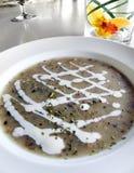 Σούπα μανιταριών με την κρέμα και τα χορτάρια Στοκ Φωτογραφία