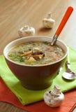 σούπα μανιταριών Στοκ Εικόνα