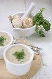 σούπα μαϊντανού μανιταριών Στοκ φωτογραφία με δικαίωμα ελεύθερης χρήσης