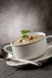 σούπα μαϊντανού μανιταριών Στοκ Εικόνα