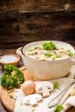 σούπα μαϊντανού μανιταριών Στοκ Εικόνες