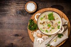 σούπα μαϊντανού μανιταριών Στοκ εικόνες με δικαίωμα ελεύθερης χρήσης