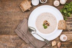 σούπα μαϊντανού μανιταριών Στοκ εικόνα με δικαίωμα ελεύθερης χρήσης