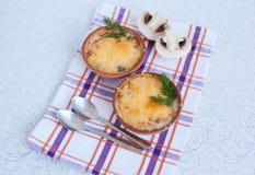 Σούπα με κρέας μανιταριών cocotte Στοκ φωτογραφίες με δικαίωμα ελεύθερης χρήσης