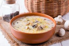Σούπα με τις μελιτζάνες και τα μανιτάρια Στοκ φωτογραφία με δικαίωμα ελεύθερης χρήσης