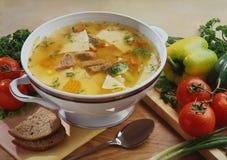 σούπα με το βόειο κρέας και τα ζυμαρικά στοκ φωτογραφία με δικαίωμα ελεύθερης χρήσης