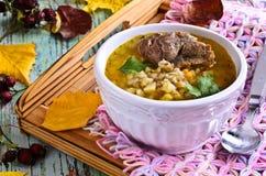Σούπα με το κριθάρι και το κρέας μαργαριταριών Στοκ φωτογραφίες με δικαίωμα ελεύθερης χρήσης