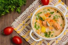 Σούπα με το σολομό Φινλανδία στοκ εικόνα