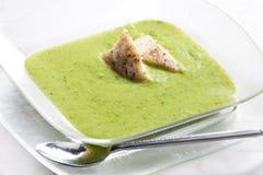 Σούπα μπρόκολου και κουνουπιδιών Στοκ Εικόνα