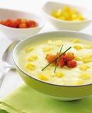 Σούπα πατατών και πράσων Στοκ Εικόνες