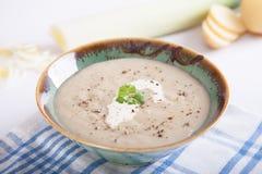 Σούπα πράσων & πατατών Στοκ φωτογραφία με δικαίωμα ελεύθερης χρήσης