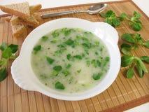 σούπα σαλάτας καλαμποκιού στοκ εικόνες με δικαίωμα ελεύθερης χρήσης