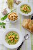 Σούπα σκόρδου με croutons, τα κρεμμύδια άνοιξη και τα φρέσκα κρεμμύδια Στοκ Εικόνες