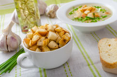 Σούπα σκόρδου με croutons, τα κρεμμύδια άνοιξη και τα φρέσκα κρεμμύδια Στοκ Φωτογραφία