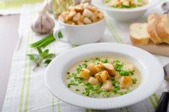 Σούπα σκόρδου με croutons, τα κρεμμύδια άνοιξη και τα φρέσκα κρεμμύδια Στοκ εικόνες με δικαίωμα ελεύθερης χρήσης
