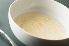 Σούπα σκόρδου Στοκ φωτογραφία με δικαίωμα ελεύθερης χρήσης