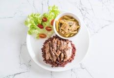 σούπα σπανακιού νερού χοιρινού κρέατος και κάρρυ με το ρύζι μούρων Στοκ Εικόνα