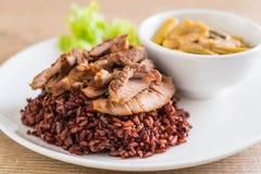 σούπα σπανακιού νερού χοιρινού κρέατος και κάρρυ με το ρύζι μούρων Στοκ Φωτογραφίες