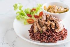 σούπα σπανακιού νερού χοιρινού κρέατος και κάρρυ με το ρύζι μούρων Στοκ εικόνα με δικαίωμα ελεύθερης χρήσης