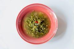 Σούπα σπανακιού της Κεϋλάνης Στοκ εικόνες με δικαίωμα ελεύθερης χρήσης