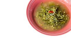 Σούπα σπανακιού της Κεϋλάνης Στοκ φωτογραφία με δικαίωμα ελεύθερης χρήσης