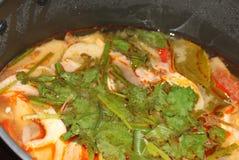σούπα Ταϊλανδός Στοκ Εικόνες