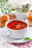 Σούπα τεύτλων με τα κουλούρια και τη σάλτσα σκόρδου Στοκ φωτογραφία με δικαίωμα ελεύθερης χρήσης