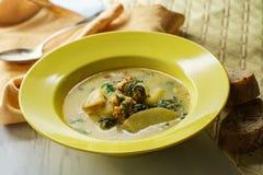 Σούπα της Τοσκάνης Zuppa στοκ φωτογραφία με δικαίωμα ελεύθερης χρήσης