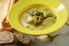 Σούπα της Τοσκάνης Zuppa στοκ εικόνα