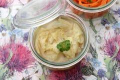 Σούπα του λάχανου Στοκ Εικόνες