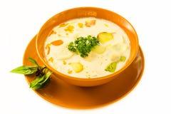 Σούπα του Tom Kha Στοκ Φωτογραφία