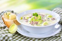 Σούπα τυριών και πράσων με το κρέας Στοκ Φωτογραφίες