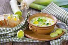 Σούπα τυριών και πράσων Στοκ φωτογραφίες με δικαίωμα ελεύθερης χρήσης
