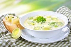 Σούπα τυριών και πράσων Στοκ φωτογραφία με δικαίωμα ελεύθερης χρήσης