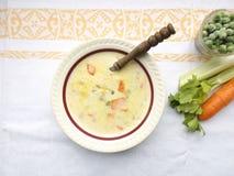 Σούπα τυριών με τα λαχανικά στοκ εικόνα με δικαίωμα ελεύθερης χρήσης